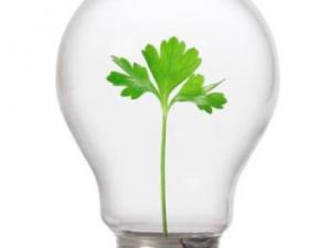 csr_lightbulb_TOP