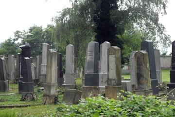 Čáslav,_Židovský_hřbitov_13